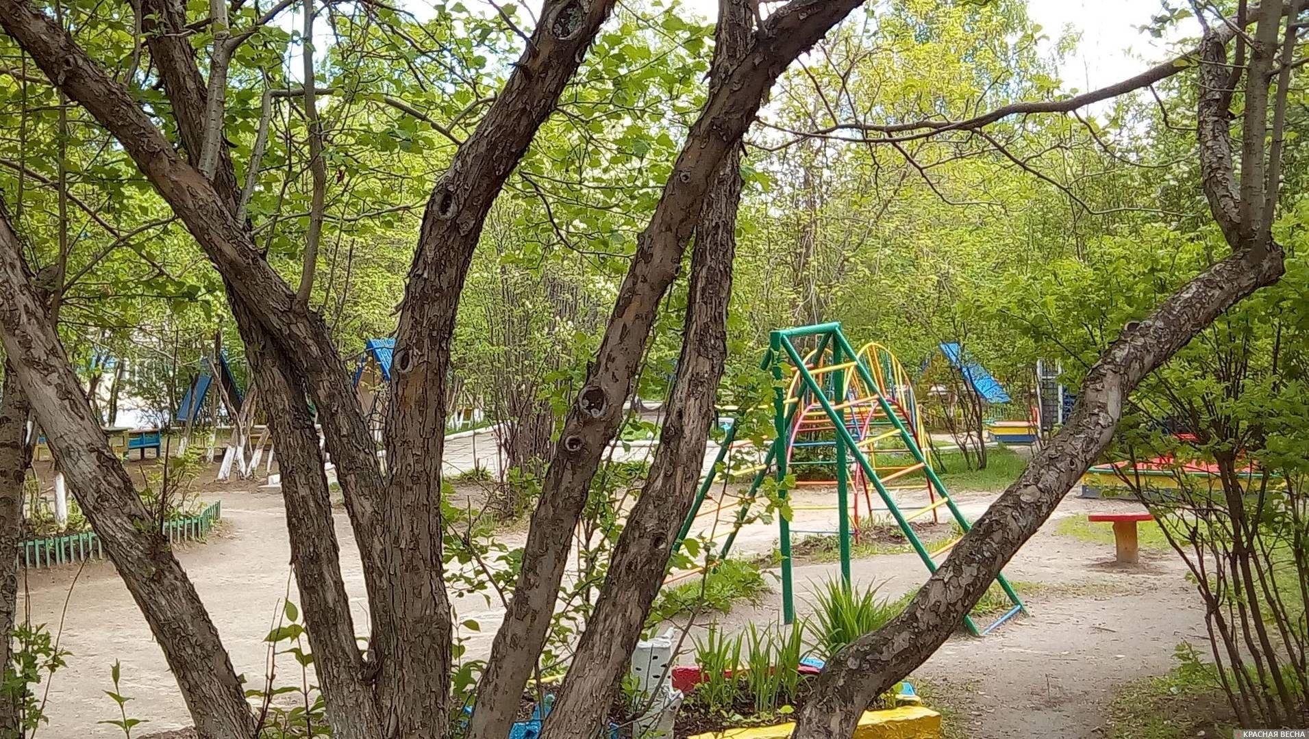 Детский сад Ольга Перегуд © ИА Красная Весна