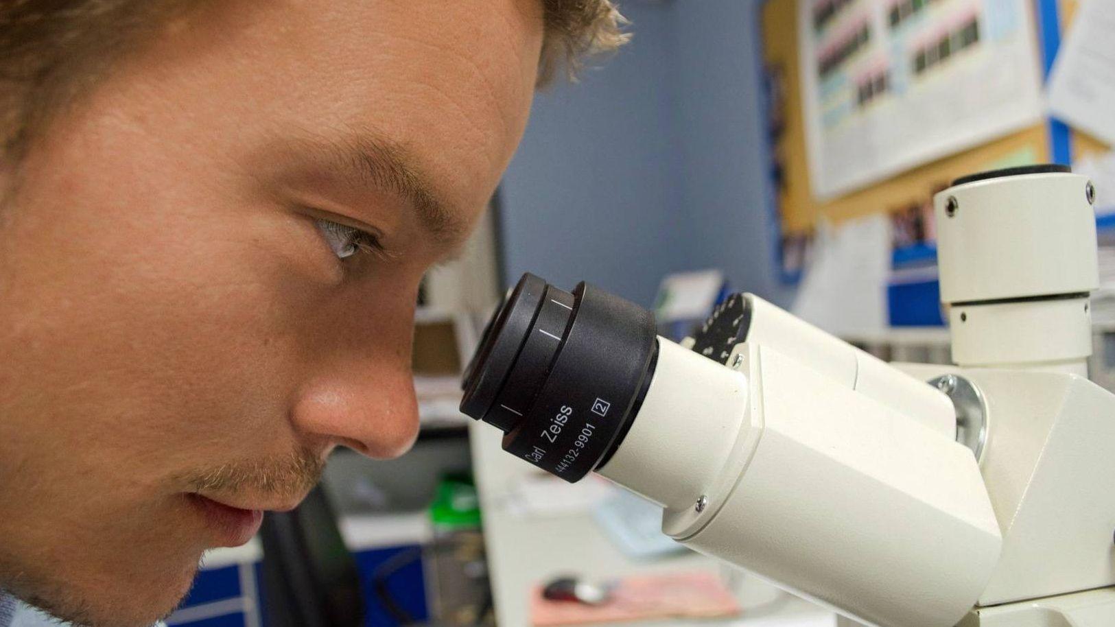 Ученый  Public Domain Pictures