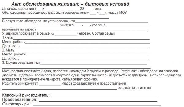 Образец написания акта обследования жилищно-бытовых условий
