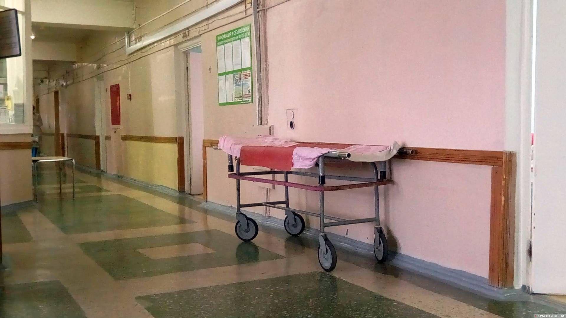 Больница Ольга Перегуд © ИА Красная Весна