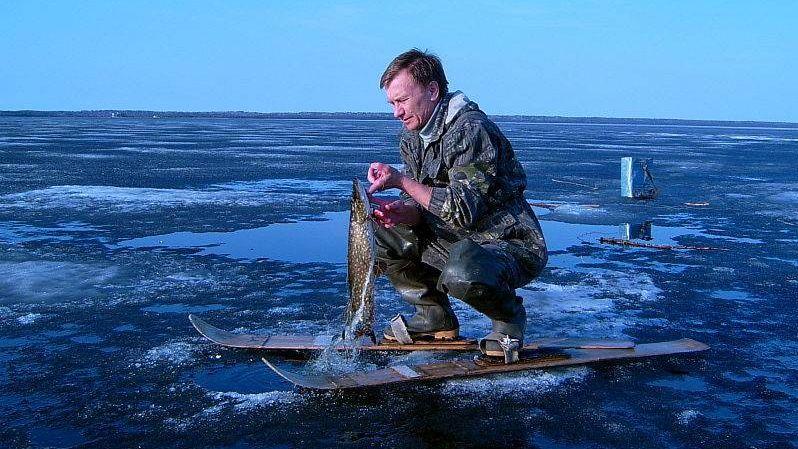 Озеро Лекшмозеро, Архангельская область - научный лов GennadiiD