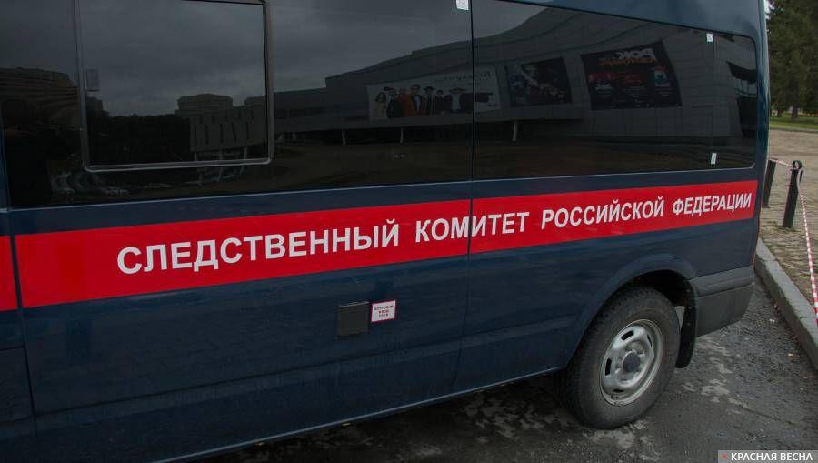 Следственный Комитет Российской Федерации Андрей Алексеев © ИА Красная Весна