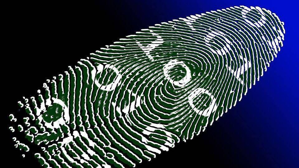 Цифровая идентичность PublicDomainPictures, pixabay, cc0