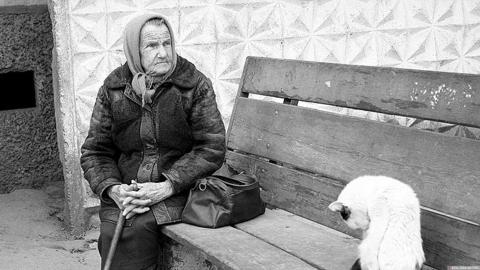 бабушка, кошка, бедность 777jew, pixabay, cc0